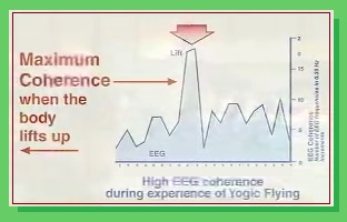 Yogic-Flying-EEG.jpg